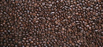 масло на поверхности кофейных зерен говорит обычно о неправильной обжарке